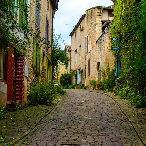 Green path by Alina Dinu - City,  Street & Park  Historic Districts ( greenery, street, buildings, rock, historic, city,  )