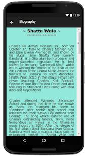 Shatta Wale Lyrics Music - náhled