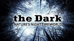 The Dark: Nature's Nighttime World thumbnail