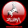 com.level500.ub.zebracomics