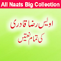 Owais Raza Qadri All Naats APK icon