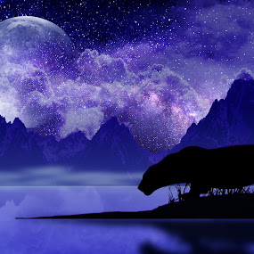 Night Panther by Charlie Alolkoy - Illustration Animals ( clouds, moon, mountain, stars, lake, night, crane, puma, panther )