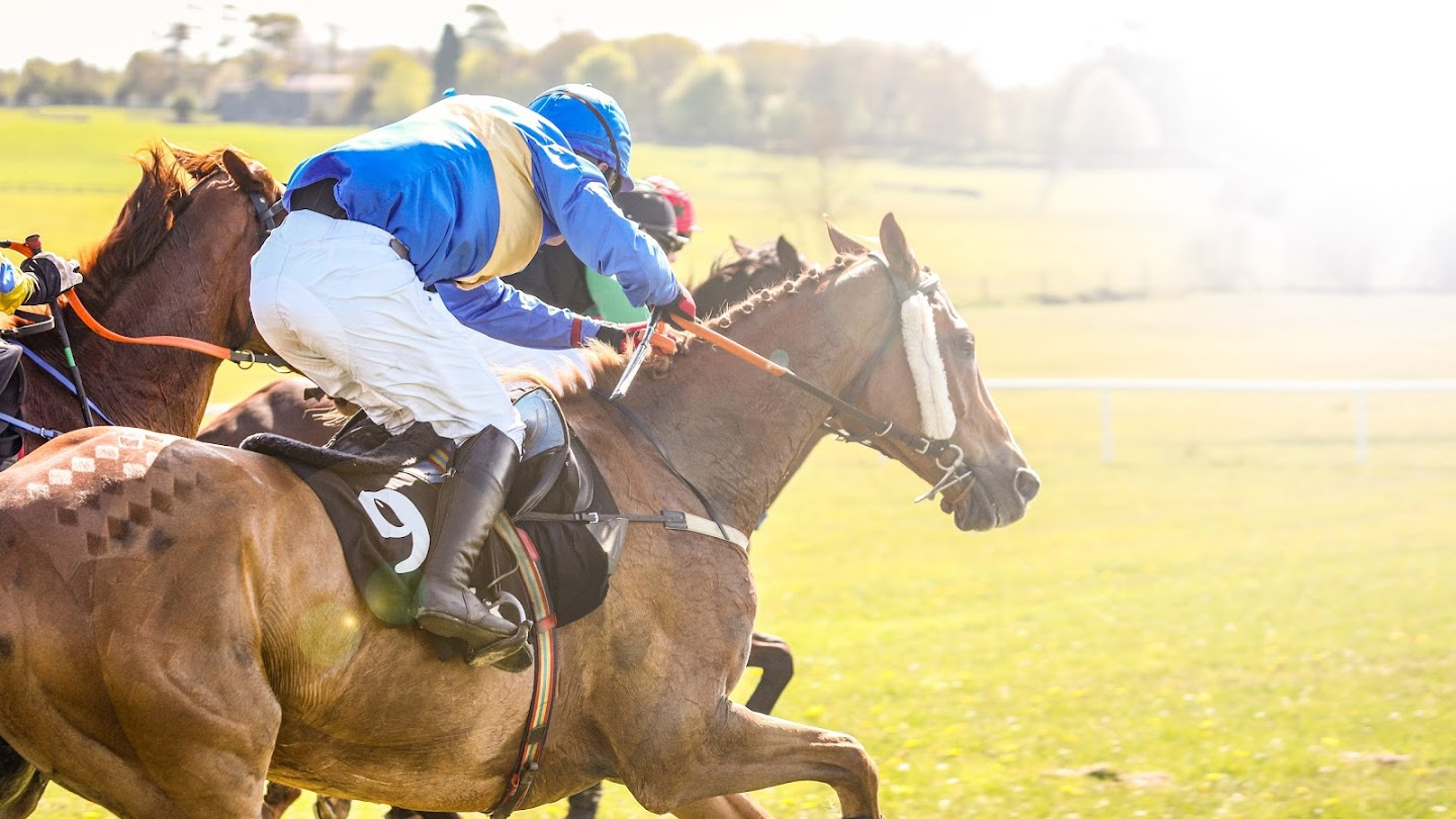 Watch Horse Racing live