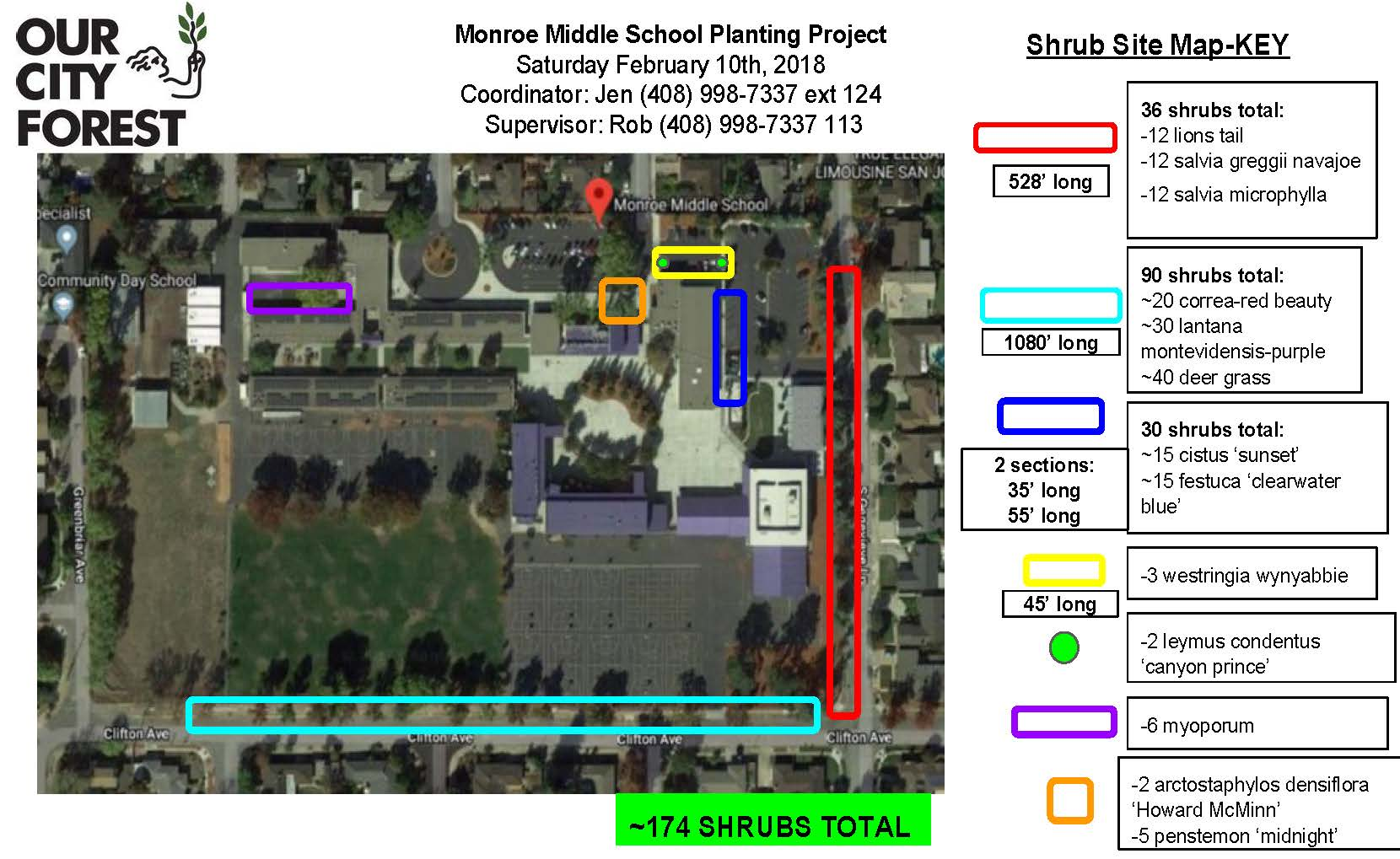 These are the shrubs (indicated by the red rectangle and turquoise rectangle, 126 total that Hamann Park would be responsible for watering, although part of this burden would potentially be shared with Monroe/Campbell Unified School District (they have already committed to supplying the water).