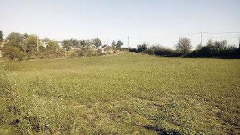 terrain à Terre-Clapier (81)
