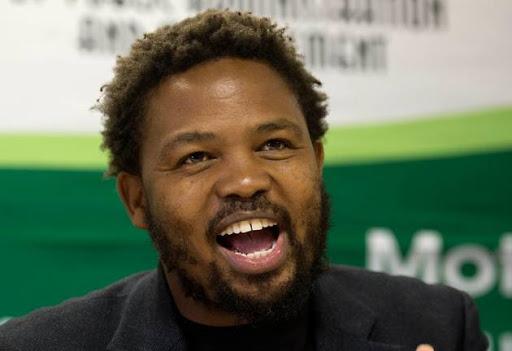 Andile Mngxitama. File photo.