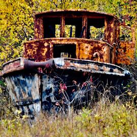 Rusty by Debbie Squier-Bernst - Instagram & Mobile iPhone