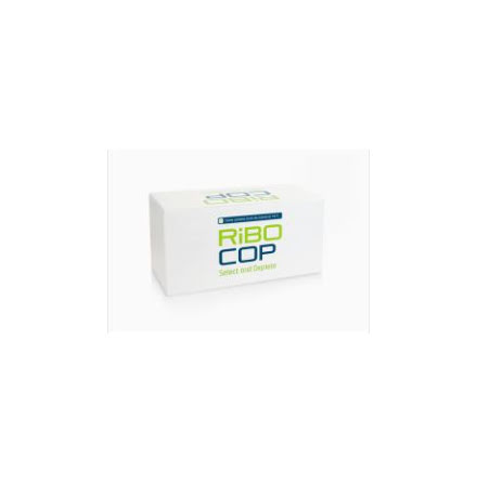 RiboCop rRNA Depletion Kit for Gram Positive Bacteria (G+)