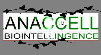 Newletter logo.png