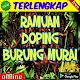 Ramuan Doping Burung Murai Download on Windows