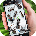 Ants on screen funny joke 2.1 Apk