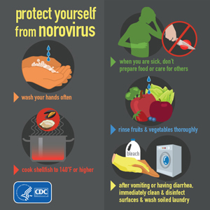 Protect yourself from norovirus infographic