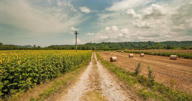Pianure Piemontesi di renatoxxx