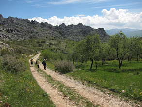 Photo: .... not to mention almond orchards.