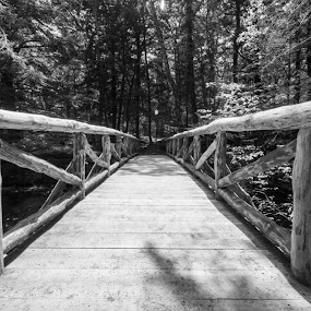 Bridge in Child's Park, PA by Eric Goldberg - Buildings & Architecture Bridges & Suspended Structures (  )
