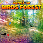 Escape From Birds Forest