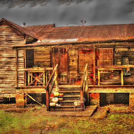 Cajun House by Ron Olivier - Digital Art Places ( cajun house )