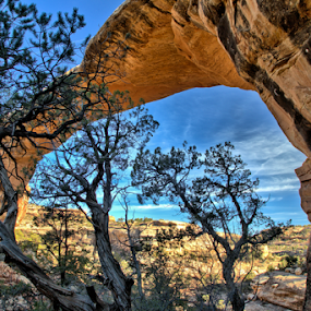 Owachomo Bridge by Roxie Crouch - Landscapes Caves & Formations ( national park, utah, formations, red rock, natural bridges,  )