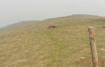 Photo: 12h53- Les sentiers visent tous le sommet du Monhoa, l'écobuage se précise car le vent pousse la fumée vers la vallée. On retrouve le GR 10 prés du sommet (1020 ms) marqué par une antenne atteint vers 13h25.