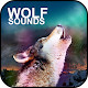 Wolf Sounds Download for PC Windows 10/8/7
