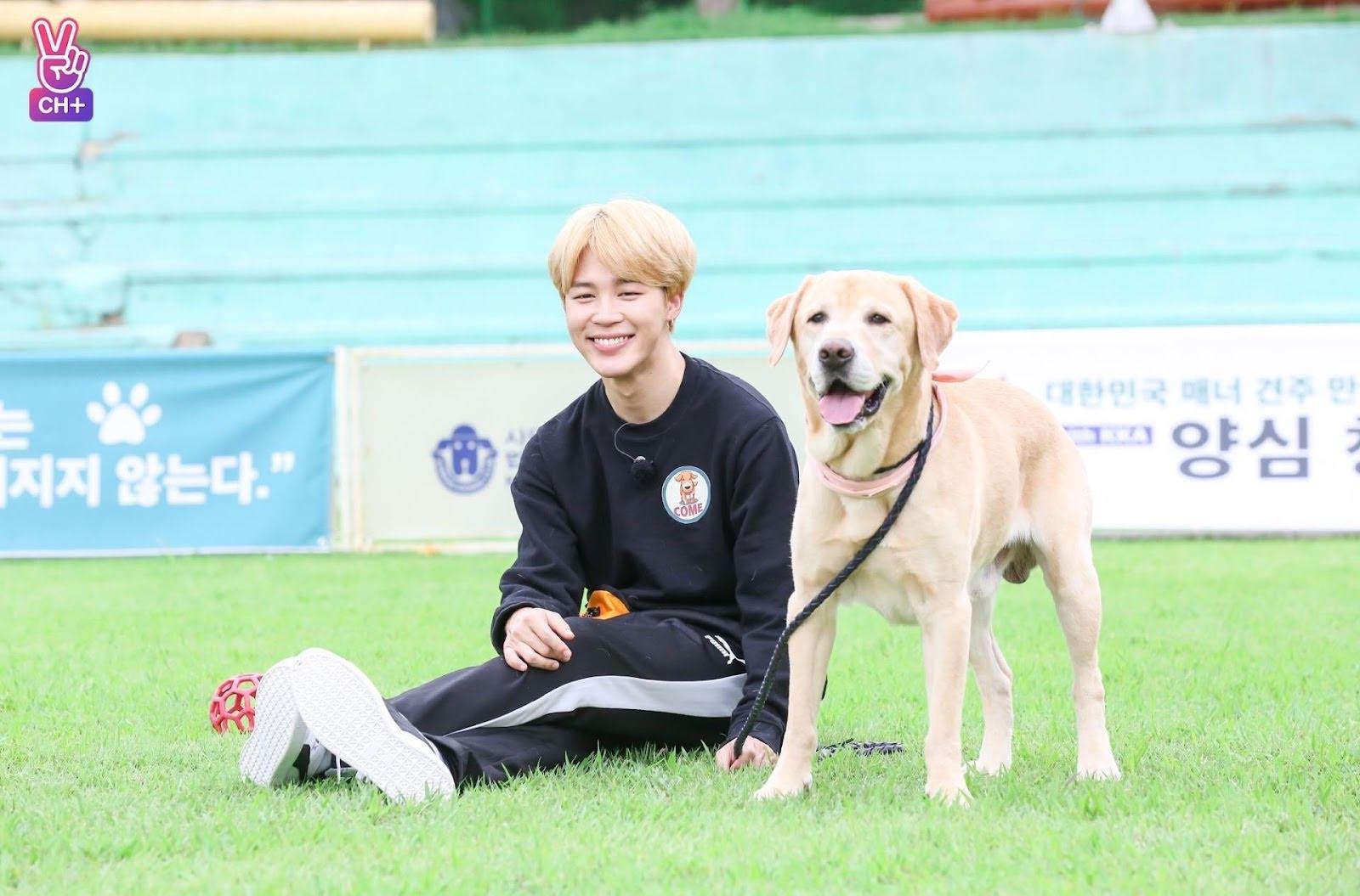 jimin and dog eye smile