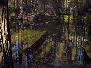 Photo: Merced River, reflections, shadows, and highlights. #2781