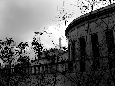 A somewhat grey Paris skyline