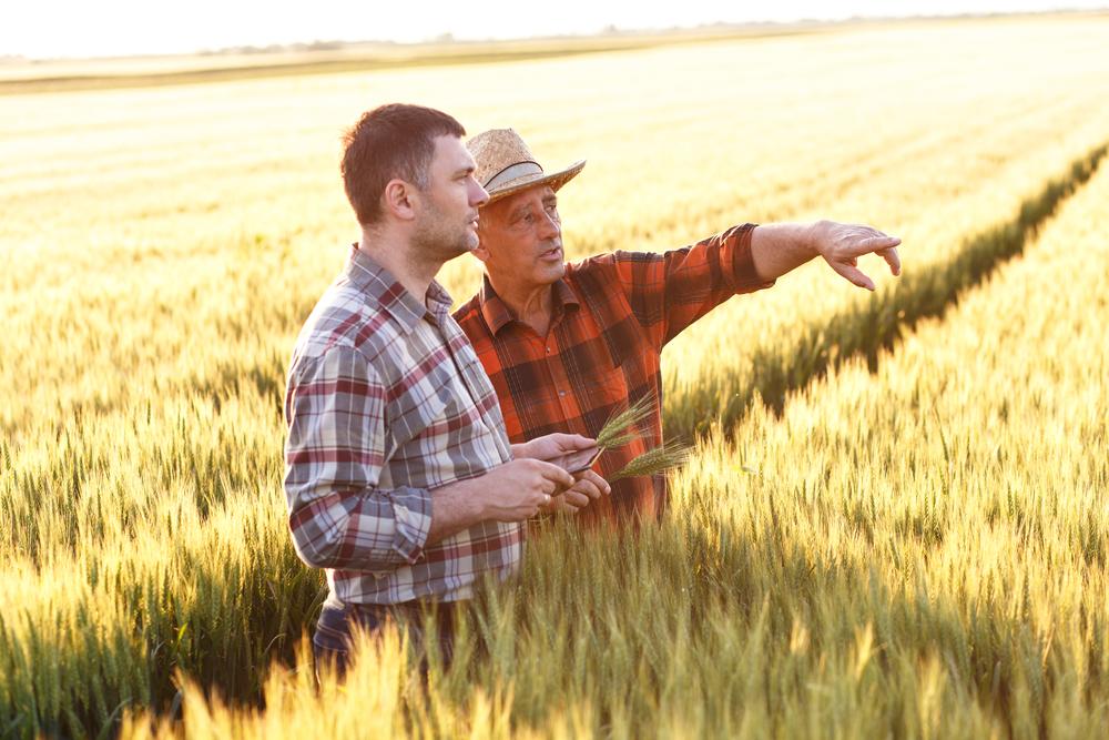 Tecnologia tem atraído novas gerações para o campo, facilitando a sucessão do trabalho rural. (Fonte: Shutterstock)