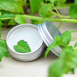 薄荷茶樹護膚香膏/當季限量供應/超好用