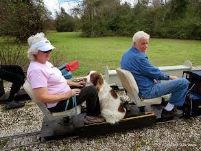 Photo: Letha Grace McCoy, their dog Rusty, and Gary McCoy     HALS Chili Fest Meet 2014-0301 RPW