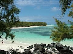 Visiter L'île aux Cerfs