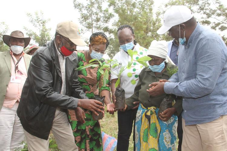 Environment CAS Mohammed Elmi (left), Maragua MP Mary Waithera, WWF Kenya Business Development and Communication Director Joyce Isiaho and Ahadi Kenya Trust CEO Stanley Kamau (right) issue seedlings and foodstuff to a Maragua resident.
