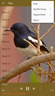 Master Kicau Burung Murai - náhled