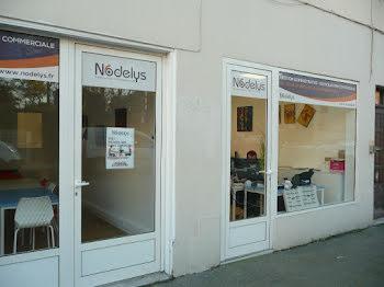 locaux professionels à Saint-Laurent-du-Var (06)