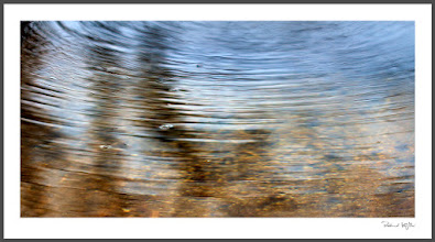 Photo: Ripples of passing beauty