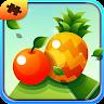 com.gunrose.fruitpuzzles