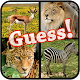 Guess The Animals Quiz (game)