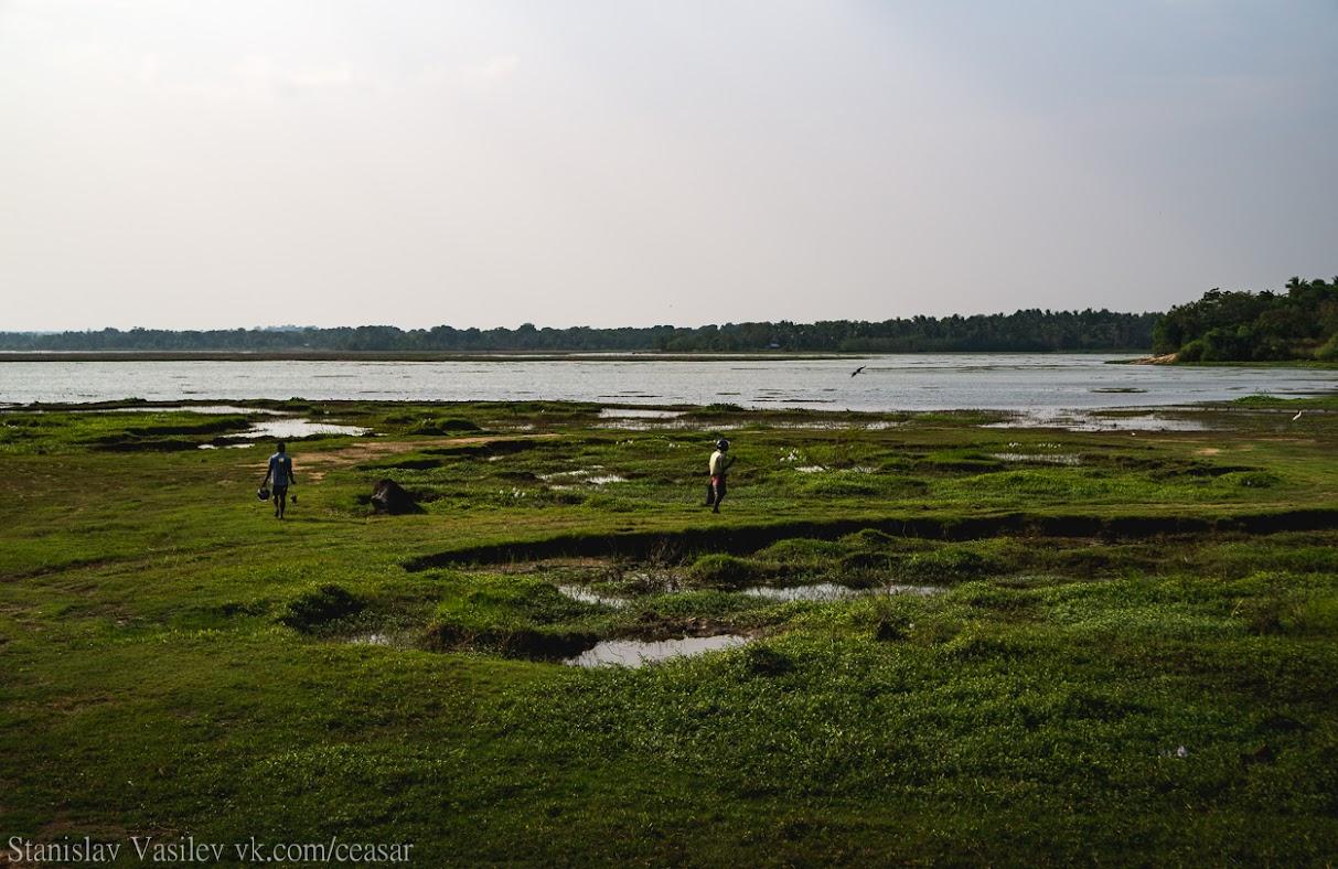 Округа озера Тисса