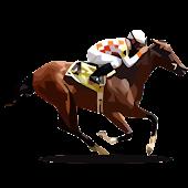 Ganyan Canavarı - At Yarışları