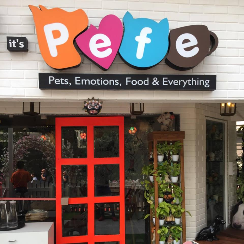 best-pet-friendly-cafe-mumbai-pefe-the-pet-cafe_image