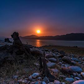 by Ketan Vikamsey - Landscapes Waterscapes ( jim corbett national park, dhikala, wonderful places, kv kliks, sunset, wilderness, ketan vikamsey )