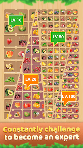 Wood Block - Connect Puzzle android2mod screenshots 5