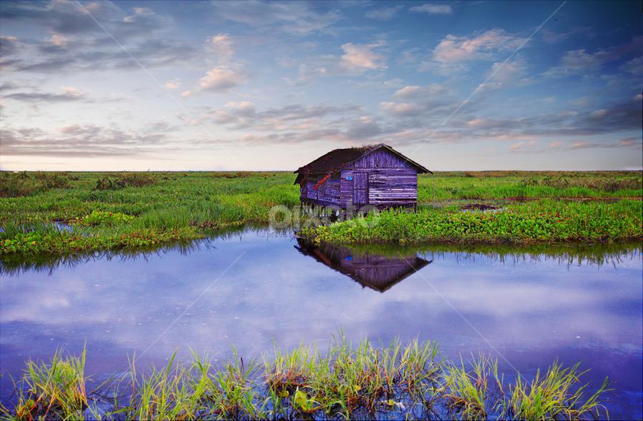 South Borneo by Budi Mardjohan - Landscapes Prairies, Meadows & Fields