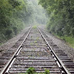 by Brian Baggett - Transportation Railway Tracks (  )