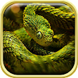 Snake Live .. file APK for Gaming PC/PS3/PS4 Smart TV