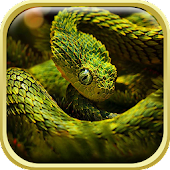 Snake Live Wallpaper HD