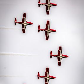 Flying High by Randy Burt - Transportation Airplanes