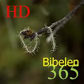 365 Bibel HD