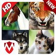 150 Animal Sounds : Ringtones, Wallpapers apk