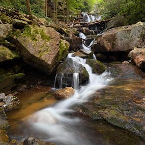 Below Glen Onoko Falls by Tim Devine - Landscapes Waterscapes ( stream, glen onoko run, poconos, waterfall, summer, pennsylvania, lehigh gorge state park, state game lands 141, woods, pocono mountains, jim thorpe )